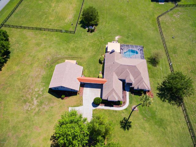 2255 NW 114th Loop, Ocala, FL 34475 (MLS #534881) :: Bosshardt Realty