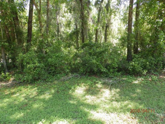 00 SW 192nd Circle, Dunnellon, FL 34432 (MLS #534932) :: Bosshardt Realty