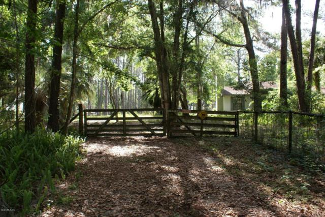 22840 NW 75th Avenue Road, Micanopy, FL 32667 (MLS #534941) :: Pepine Realty