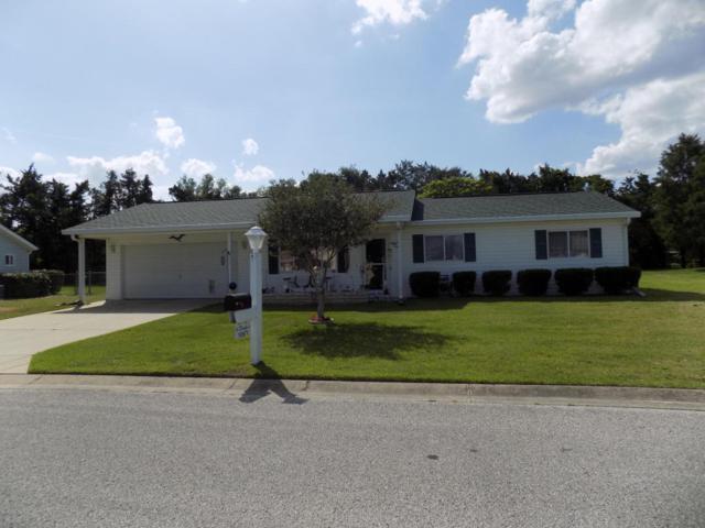 10671 SE 174th Loop, Summerfield, FL 34491 (MLS #535012) :: Pepine Realty