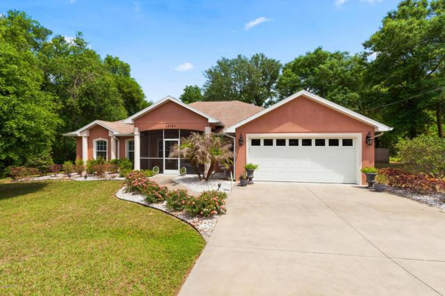 13131 SE 100th Avenue, Belleview, FL 34420 (MLS #535020) :: Realty Executives Mid Florida