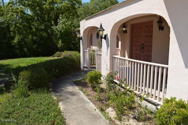 3359 SW 137th Loop, Ocala, FL 34473 (MLS #535096) :: Pepine Realty