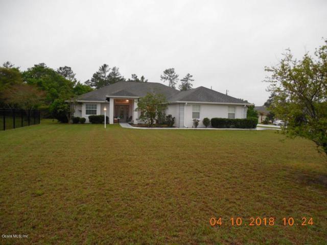 10360 SW 48th Avenue, Ocala, FL 34476 (MLS #535126) :: Pepine Realty
