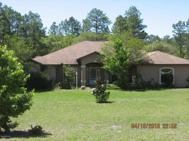 8591 SW 138th Terrace, Dunnellon, FL 34432 (MLS #535133) :: Bosshardt Realty