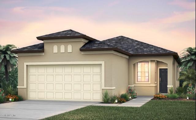 9684 SW 63rd Loop Loop, Ocala, FL 34481 (MLS #535149) :: Pepine Realty