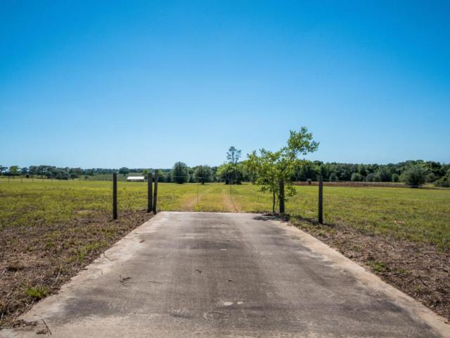 TBD SW 140th Avenue, Ocala, FL 34481 (MLS #535150) :: Bosshardt Realty