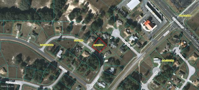 0 Pine Trace Loop, Ocala, FL 34472 (MLS #535151) :: Realty Executives Mid Florida