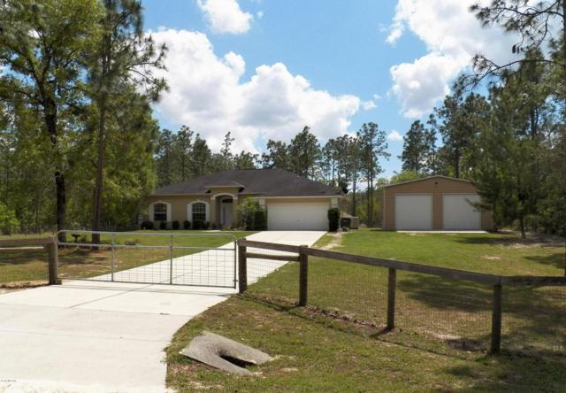 12380 SW 64th Lane, Ocala, FL 34481 (MLS #535167) :: Bosshardt Realty