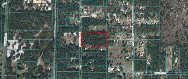 0 SW 189th Ave, Dunnellon, FL 34432 (MLS #535199) :: Bosshardt Realty