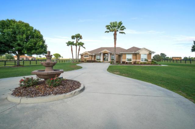 9145 SW 52nd Terrace, Ocala, FL 34476 (MLS #535410) :: Bosshardt Realty