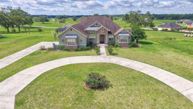 1804 NW 86th Place, Ocala, FL 34475 (MLS #535506) :: Bosshardt Realty