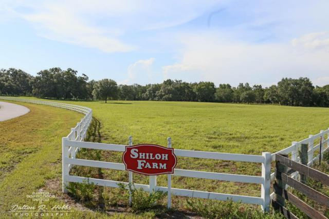 0 SW 106 Lane Road #4, Dunnellon, FL 34431 (MLS #535533) :: Bosshardt Realty