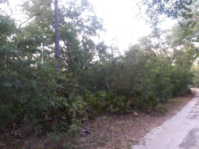 0 NE 153 Place, Fort Mccoy, FL 32134 (MLS #535567) :: Bosshardt Realty