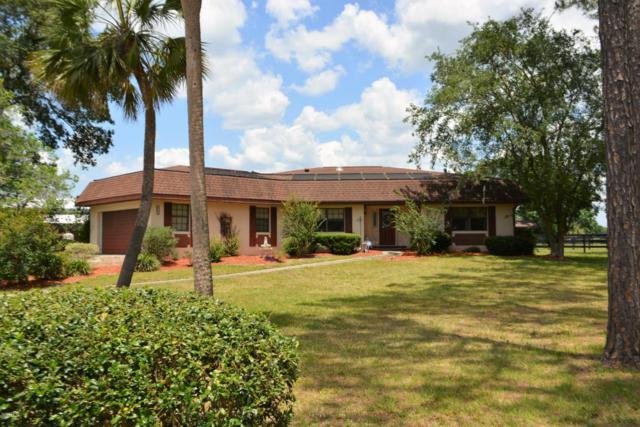 8431 NW 2nd Street, Ocala, FL 34482 (MLS #535823) :: Bosshardt Realty