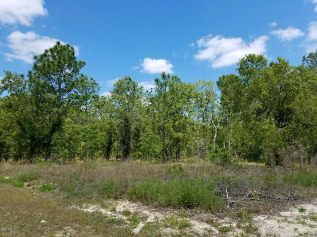 0 SW 76th Lane, Dunnellon, FL 34432 (MLS #535824) :: Realty Executives Mid Florida