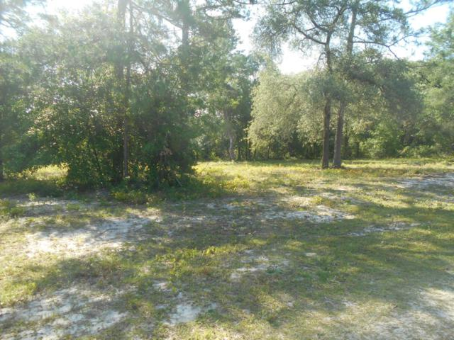 0 NE 148 Avenue, Fort Mccoy, FL 32134 (MLS #535917) :: Realty Executives Mid Florida