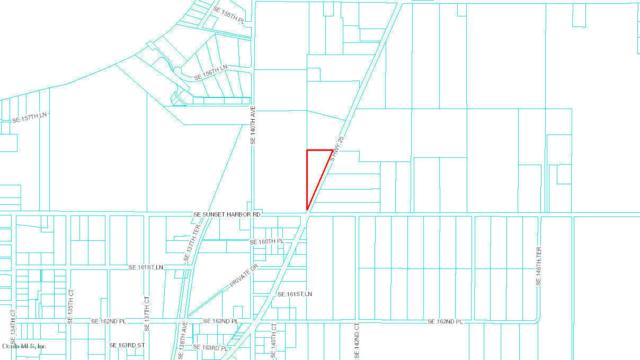 0 S Hwy 25, Weirsdale, FL 32195 (MLS #536200) :: Bosshardt Realty