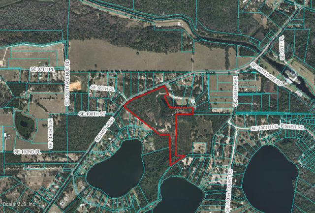 9969 SE Hwy 464C Highway, Ocklawaha, FL 32179 (MLS #536227) :: Bosshardt Realty
