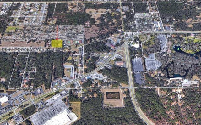 000 NE 29th Street, Silver Springs, FL 34488 (MLS #536322) :: Realty Executives Mid Florida