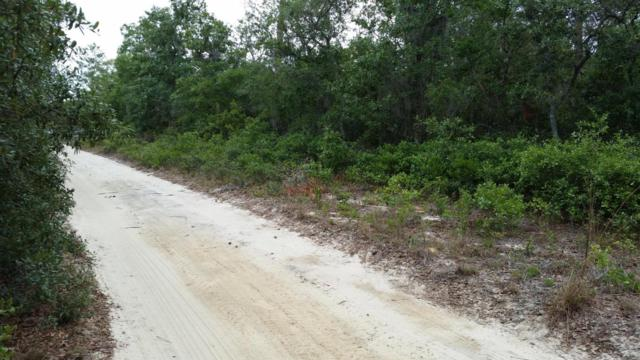 000 NE 236 Lane, Fort Mccoy, FL 32134 (MLS #536373) :: Pepine Realty