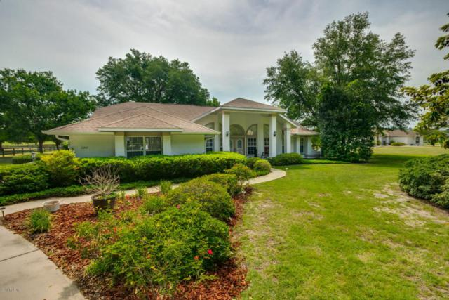 11245 NW 17th Court Road, Ocala, FL 34475 (MLS #536555) :: Realty Executives Mid Florida