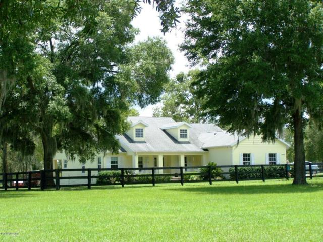 19950 SW 5th Place, Dunnellon, FL 34431 (MLS #536581) :: Realty Executives Mid Florida