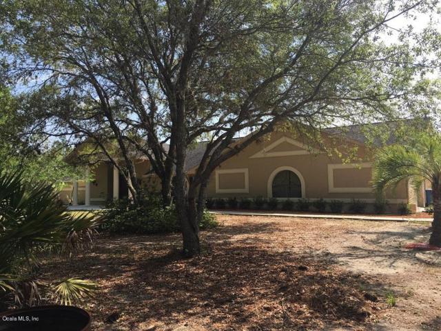 3685 N Palomino Terrace, Beverly Hills, FL 34465 (MLS #536591) :: Bosshardt Realty