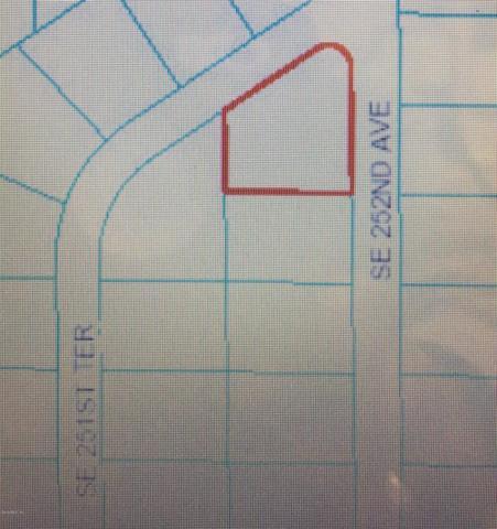 16600 SE 252nd Avenue, Umatilla, FL 32784 (MLS #536614) :: Bosshardt Realty