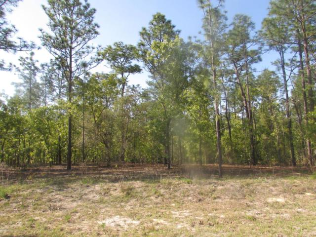 0 SW 128TH TERRACE RD, Dunnellon, FL 34432 (MLS #536768) :: Realty Executives Mid Florida