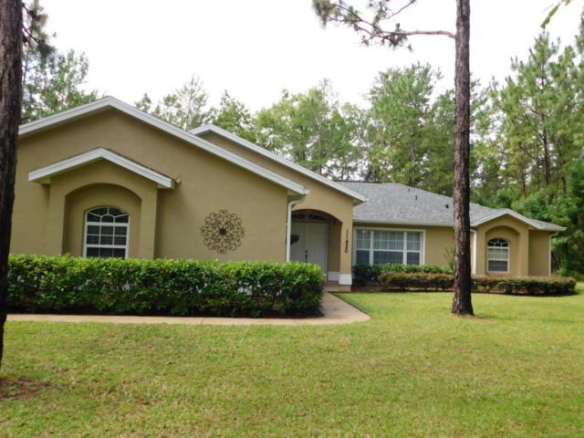 11420 SW 46th Avenue, Ocala, FL 34476 (MLS #536823) :: Realty Executives Mid Florida