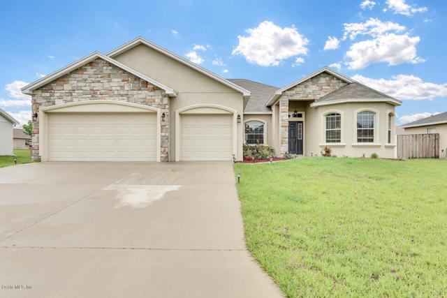 5319 Great Egret Drive, Leesburg, FL 34748 (MLS #536884) :: Bosshardt Realty