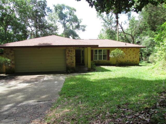 19620 Fox Trail, Dunnellon, FL 34432 (MLS #536887) :: Bosshardt Realty