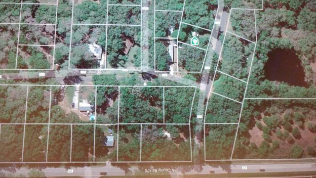 2913 E Cr 423, Lake Panasoffkee, FL 33538 (MLS #536888) :: Bosshardt Realty