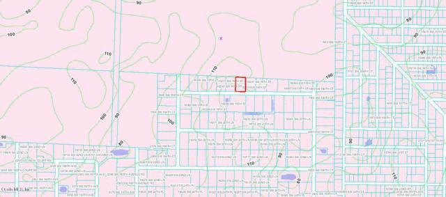 16245 SW 19 Th Street, Ocala, FL 34481 (MLS #537109) :: Bosshardt Realty