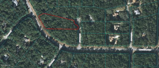00 SW 186th Avenue, Dunnellon, FL 34432 (MLS #537491) :: Bosshardt Realty