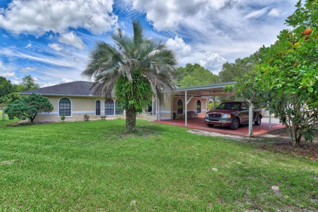 10181 SE 111th Court, Ocala, FL 34472 (MLS #537540) :: Bosshardt Realty