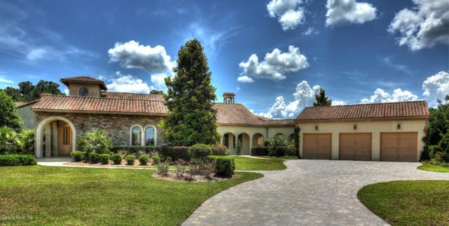 12514 SW 140th L Loop, Dunnellon, FL 34432 (MLS #537819) :: Realty Executives Mid Florida
