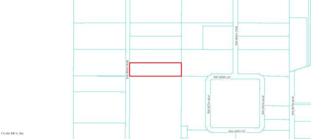4221 SW 89th Ave., Ocala, FL 34481 (MLS #537823) :: Pepine Realty