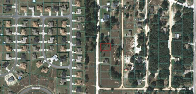 00 SE 102 Terrace, Belleview, FL 34420 (MLS #538097) :: Bosshardt Realty