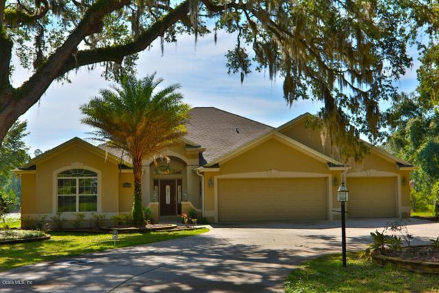 17289 SE 165th Avenue, Weirsdale, FL 32195 (MLS #538141) :: Bosshardt Realty