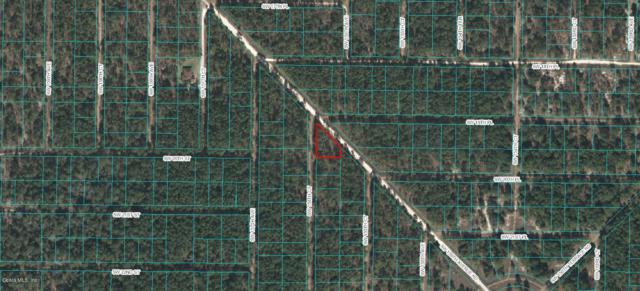 0 SW 156th Court, Ocala, FL 34481 (MLS #538249) :: Bosshardt Realty