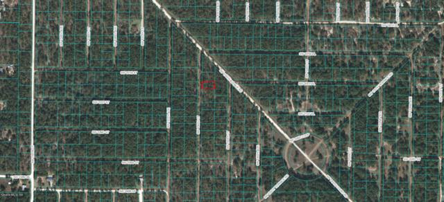 0 SW 156 Court, Ocala, FL 34481 (MLS #538251) :: Bosshardt Realty