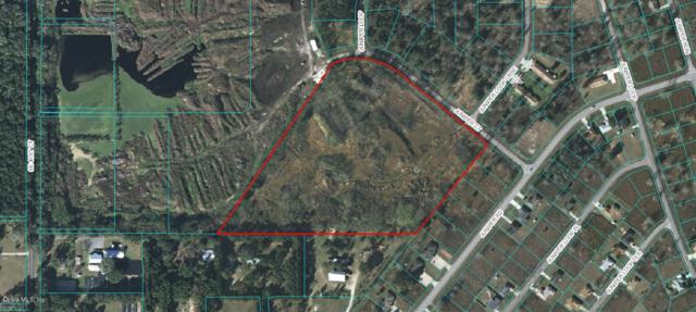 TBD Juniper Loop Terrace, Ocala, FL 34480 (MLS #538375) :: Realty Executives Mid Florida
