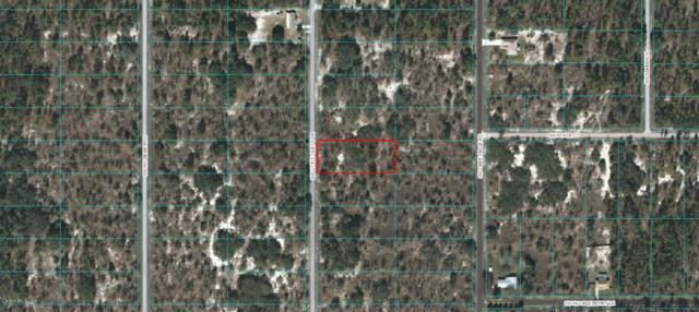 0 SW Little Cliffs Drive, Dunnellon, FL 34431 (MLS #538401) :: Realty Executives Mid Florida