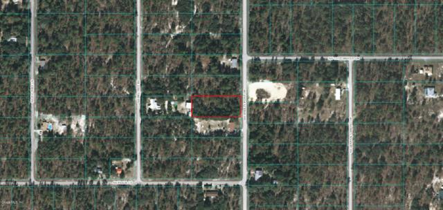 0 Breezy Point Dr Drive, Dunnellon, FL 34431 (MLS #538404) :: Realty Executives Mid Florida