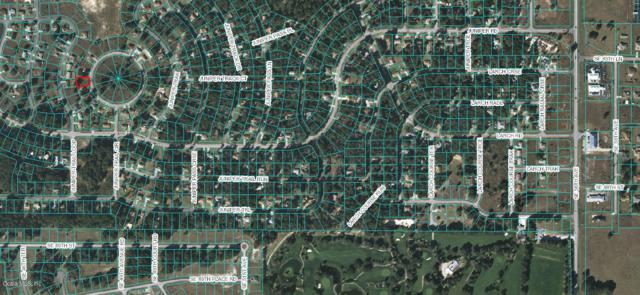 47 Juniper Trail Circle, Ocala, FL 34480 (MLS #538433) :: Realty Executives Mid Florida