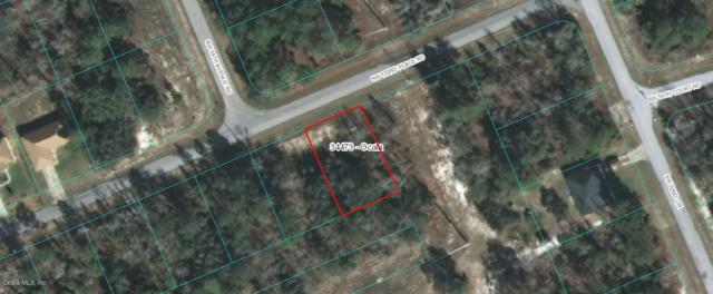TBD SW 153rd Place Road #18, Ocala, FL 34473 (MLS #538450) :: Realty Executives Mid Florida