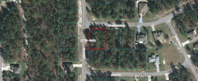 TBD SW 131st Street Road #01, Ocala, FL 34473 (MLS #538460) :: Realty Executives Mid Florida