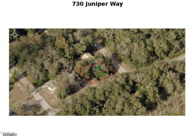 730 S Juniper Way, Inverness, FL 34450 (MLS #538467) :: Realty Executives Mid Florida