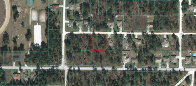 14412 SW 19th Place, Ocala, FL 34481 (MLS #538480) :: Realty Executives Mid Florida